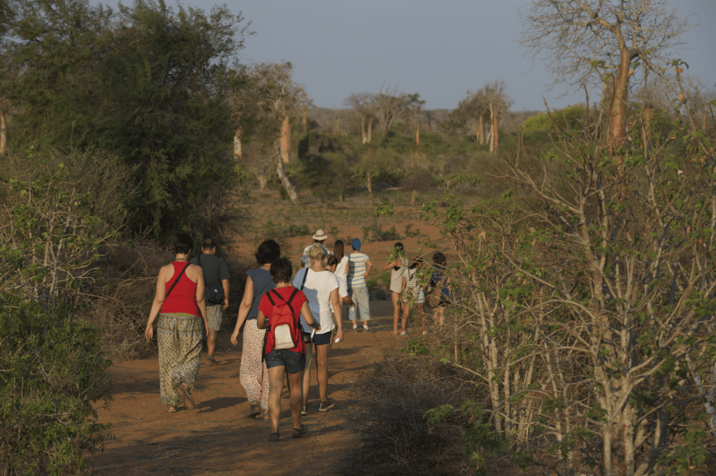 Viaje Solidario