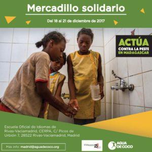 MercadilloRivas2017