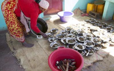 Nutricionista para Madagascar