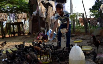 25 años, 25 historias: Makara Yu, camboyano de 13 años, nos cuenta la influencia que tiene Agua de Coco en su vida