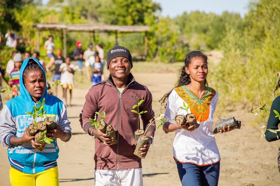 26 de julio: Día Internacional para la Defensa del Ecosistema Manglar