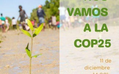 Agua de Coco estará en la COP25 presentando el trabajo de preservación del medio ambiente