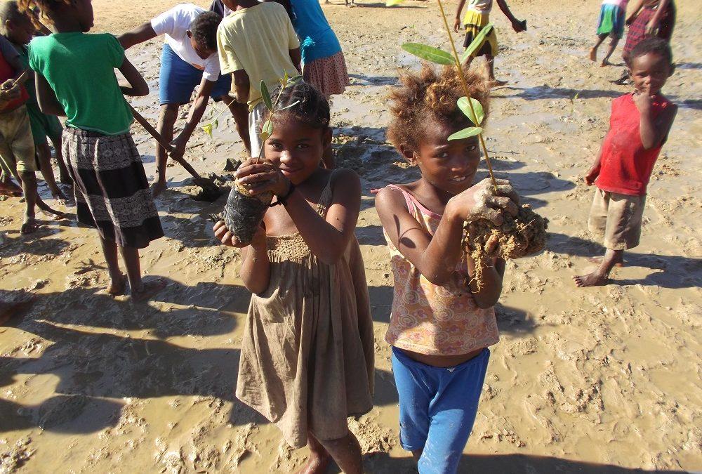 Buscamos técnica/o ambiental para Madagascar