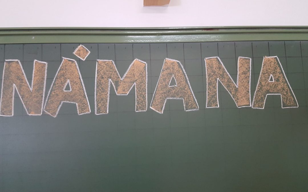 Námana comienza la gira de sensibilización por varios centros educativos de Sevilla
