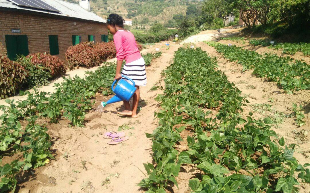 La Granja Escuela de Fianarantsoa reabre tras las vacaciones con una agenda formativa llena de actividades