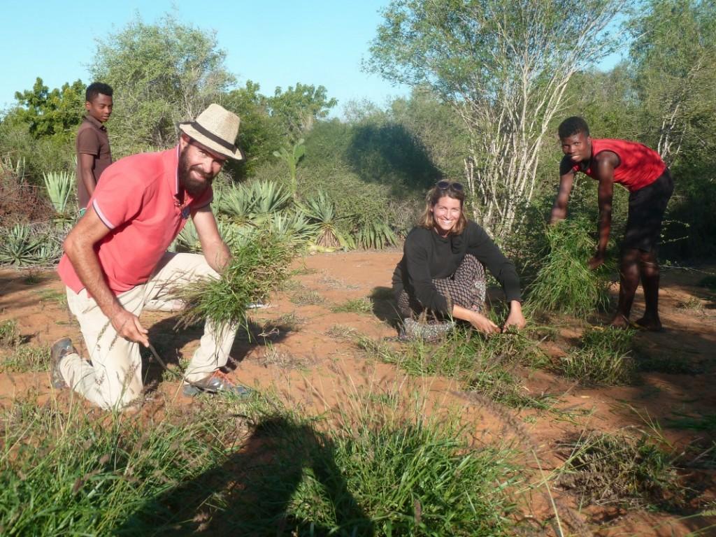 Reboisement au Centre de Formation en Agroforesterie et Ecotourisme (CFAE) à Mangily